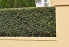 Acton TAS Hard landscaping surfaces 8